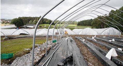 Ei kraftig oppgradering er i ferd med å ta form på Joa. Ekteparet som driv Jordbærtorget investerer for omlag 5-6 millionar kroner.
