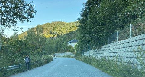 Trangt: Månovegen opp til Valdres vidaregåande skule er uten fortau på et langt strekke. Nå henger gresset utover kantene, mens det vinterstid ofte er snøkanter. Det er i tida før klokka 08.00 og ved skoleslutt at det er mye trafikk.