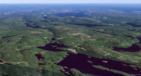 Denne skogeiendommen mellom Risør og Kragerø kom for kort tid siden ut for salg.