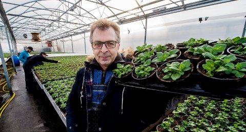 HER KOMMER SOMMEREN: Både Øivind Osen og plantene han driver frem, stortrives med mye lys i 18–19 grader. Osen har rundt 200.000 planter på gang for sommeren 2018.