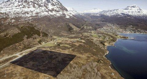 Herjangshøgda: Her, ved krysset inn til Herjangen foreslår Futurum og Narvikgården å bygge nytt fengsel. De mener tomten oppfyller alle krav til lokalisering av et nytt fengsel, og er i full gang med å regulere tomten til formålet. Narvikgården tilbyr seg også å finansiere og bygge det nye fengslet. Tomten er på totalt 150 mål. Foto: Ragnar Bøifot