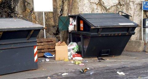 FLYTER OVER: Dette har ikke vært et uvanlig syn ved containerne for hytteavfall ved Barthebrygga. ARKIVFOTO: JIMMY ÅSEN