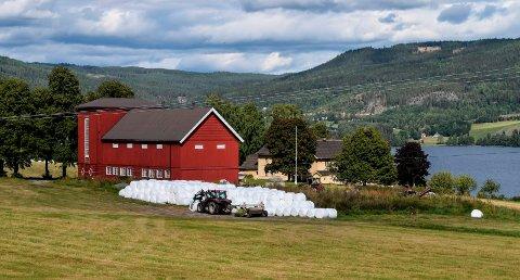VIKER GÅRD: Milliardær Christen Sveaas akter ikke å bosette seg på Viker gård. Da får han heller ikke konsesjon, mener rådmannen i Søndre Land.