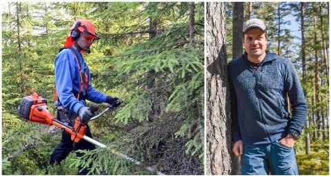 GOD RESPONS: Skogsjef Håvard Dufseth i Løiten Almenning gleder seg over at mange ungdommer ønsker å jobbe med ungskogpleie i sommerferien.