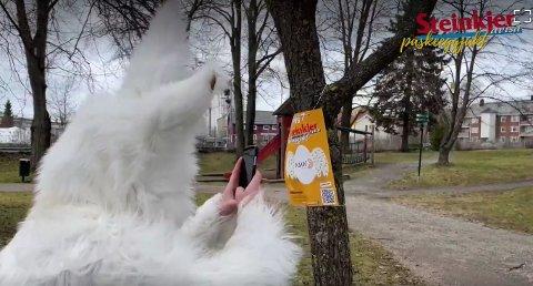 Mange i Steinkjer gjorde som Påskeharen, og samlet Steinkjer-Avisas digitale påskeegg i løpet av påska. Nå har vi trukket ut vinnerne!