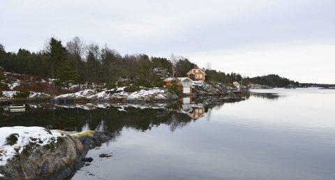 Nytt hyttefelt: Grunneier Stein Oksum ønsker å bygge ut dette idylliske området i Ulevågkilen med 12-14 hytter. Foto: Frode Gustavsen