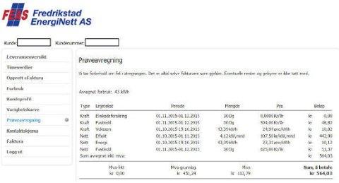 NETTLEIE: Nettleien til Fredrikstad EnergiNett AS består nå av tre deler. Det er effektleddet, som koster 107,50 per kW, som drar månedsprisen kraftig opp for hytteeier Håkon Beckman.