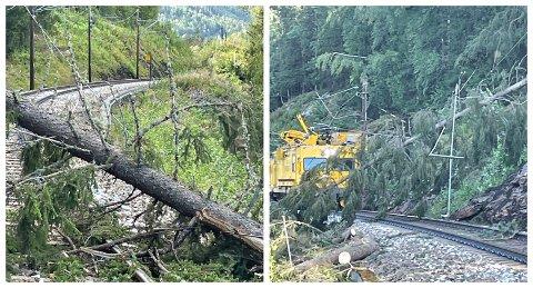 Flere trær har blåst over togskinnene på Dovrebanen sør i Gudbrandsdalen.