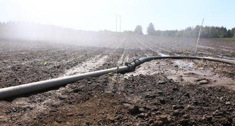 I GANG: Utbetalingene fra staten etter årets tørkesommer er godt i gang.