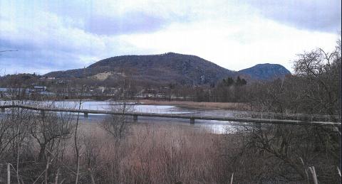BRU: Rådmannen sendte ut på høring et skisseforslag til trasé for gangbru i Krossvatnet.