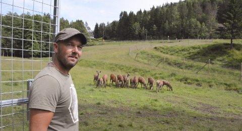 UTVIDER: Herman Strand er strålende fornøyd med utviklingen blant hjortebestanden på gården. Til høsten begynner første slakterunden, og planen er å utvide driften med to nye felt.Alle foto: HPB / privat