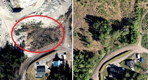 Enebakk kommune reagerer på at det ble hugget unødvendig mye i vegetasjonsbeltet som skal være mellom næringsområdet NY 4 Syd og Myraveien. Bildet til venstre er fra 2020, mens bildet til høyre viser trærne som var der i 2017.