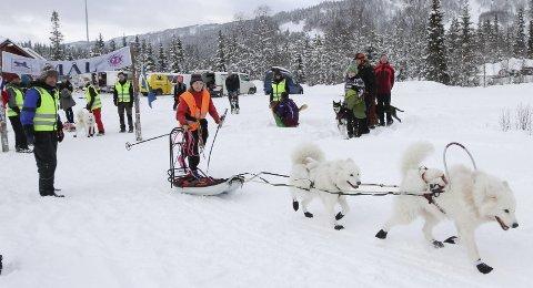 GOD DELTAKELSE: I fjor var det god deltakelse i hundeløpet Herringen Trail på Sjåmoen. Her er Gerd Granås fra arrangørklubben på vei ut fra start.
