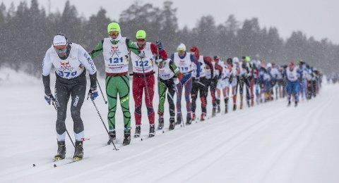 I TET FRA START: Ole Jakob Forsmo imponerte i verdens lengste skirenn. Bildet er tatt tidlig i løpet og Halsøy-løperne Ole Jakob Forsmo og Jesper Abelsen Andreasen ligger helt i tet bak Henrik Sollie som tok femteplassen til slutt. Foto: Nordenskiöldsloppet