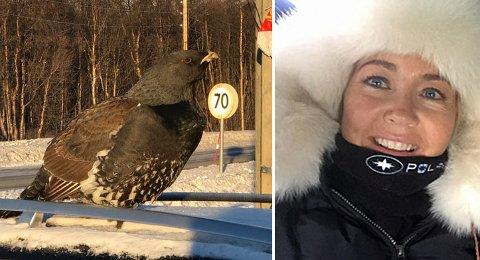 UT PÅ TIUR: Den amorøse storfuglen fant frem til Tones bil igjen, selv om hun hadde kjørt 200 meter.