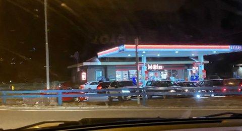 UTE: Dette bildet ble tatt av en Telen-leser i natt. Rånerne var ute og luftet seg.