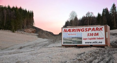 NÆRINGSPARK: Holtskogen næringspark er i ferd med å bygges i ut i Hobøl.