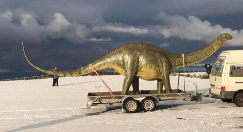 LANGT NORD: Kompisene som fraktet opp dinosauren skulle egentlig bare ha med en liten leke til å lage noen morsomme bilder.