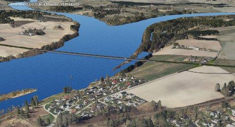 Slik ser Nye Veier for seg en motorveibru rett ved elvemøtet i Nes.