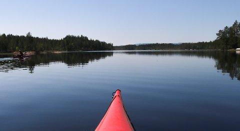 GODT BESØKT: Vestland kanoutleie opplever godt besøk i sommervarmen, men samtidig tror Per Vestland at bålforbud og skogbrannfare bremser litt på utfartstrangen til padlerne.
