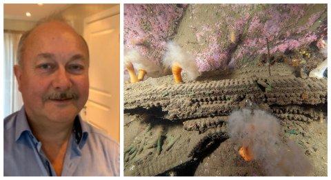 LEDER: Kjell Bjørnar Bakken er leder for Nordland fylkesfiskerlag. Bildet itl høyre viser restene av dumpet ammunisjon fra krigen ruster og går langsomt i oppløsning. Det betyr utslipp av miljøfarlige stoffer
