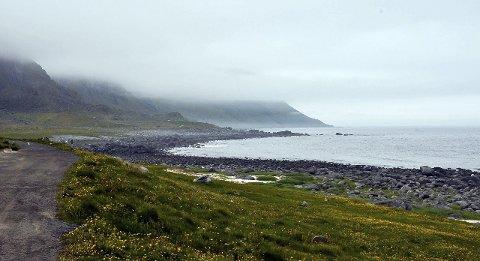 IDYLL: Selv med tåka hengende lavt er landskapet ute på Eggum noe turistene setter stor pris på.