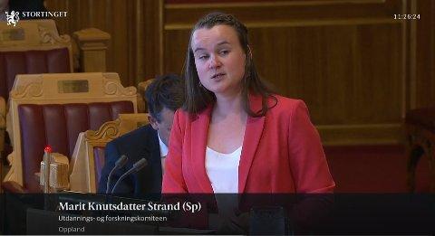 Fredag kom Marit Knutsdatter Strand med representantforslag på Stortinget om å stoppe nedbygginga av psykisk helsevern.