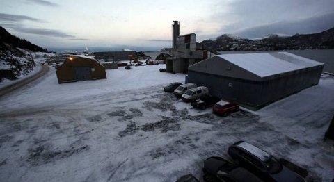 Det er ikkje meir enn tre år sidan Florø mekaniske verksted flytta inn i nye lokale inne på baseområdet. Tysdag blei verksemda slått konkurs.