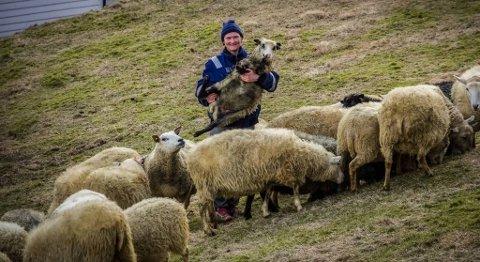 Inger Helen Stenevik har 84 sauar på garden i Guddal i Sogn og Fjordane. FOTO: OLE JOHANNES ØVRETVEIT, FIRDA