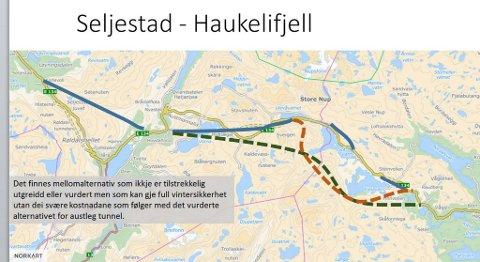 E134 Haukelivegen AS vil ha vurdert nye alternativer til vintersikker stamvei over Haukeli. Det får de ikke før Nasjonal Transportplan (NTP) er vedtatt, ifølge Samferdselsdepartementet. ILLUSTRASJON: E134 HAUKELIVEGEN AS