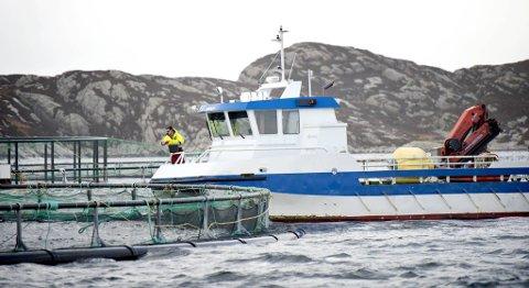 Svakere resultat for Mowi. Bildet er fra et anlegg på Solsvik. FOTO: SKJALG EKELAND