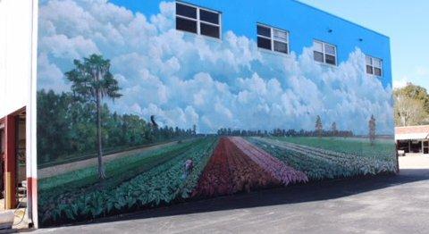 Slik kan det gjøres: Begge bildene er fra  Lake Placid, en liten landsby ekteparet besøkte i Florida. Byen er kjent i USA for sine tallrike, flotte «murals», veggmalerier.