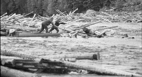 TØFFE KARER: Tømmerfløtingen krevde innsats fra sine menn.