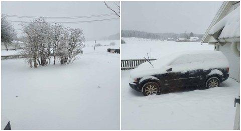 GRATIS: Terje Evensen ville gjerne bli kvitt snøen i gårdsplassen. Nå ser det ut til at regn og mildvær er det eneste som kan hjelpe ham.