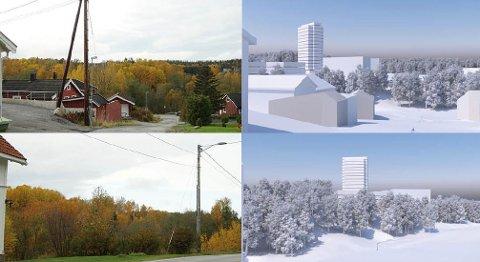 KRITISKE: Velforeningen i nærområdet til det planlagte tårnet på Remmen er ikke bare kritiske til selve bygget, men også hvordan kommunen og de folkevalgte har håndtert saken.