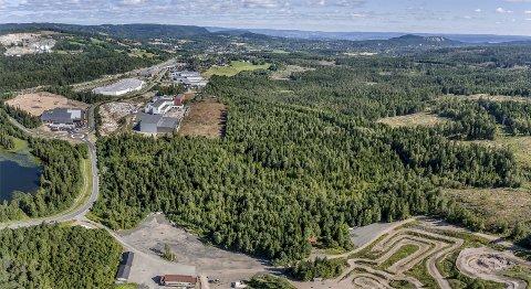 MÅ AVKLARE: Spørsmålet er om denne skogen mellom næringsområdet på Gjellebekk og motorsportanlegget i Leirdalen skal omdisponeres til næringsområde eller helårsanlegg for ski.