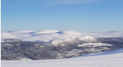 ENGERDAL PANORAMA: Engerdal Østfjell sett fra Kvitvola. Midt i bildet Hundskampen som ligger overfor Solheimfeltet. Fra Hundskampen og nordover (til venstre i bildet) er det laget detaljskisser for Engerdal Panorama med flere hundre leiligheter og et område på 1000 dekar. Alpinanlegget i Engerdal Østfjell ligger i ytterkant av bildet og het til venstre.