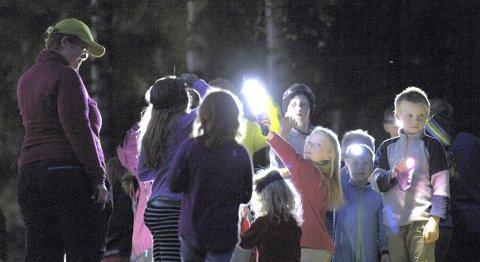 Ei løype med reflekser i skogen er spennende å utforske når mørket siger på. Foto: Peder Mathisen