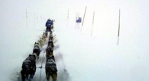 Uvær: Hundeløpet Gausdal maraton 300 ble arrangert for første gang i 2015, i et skikkelig snøvær over Valdresflye.