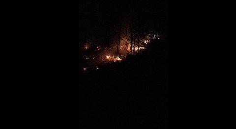 SKOGBRANN: Lokale brannmannskaper rykket ut til en skogbrann i Folldal mandag kveld.