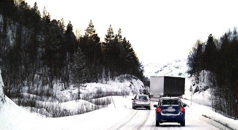 Nordland fylkeskommune ønsker å ta grep for å hindre flere ulykker med utenlandske vogntog i framtiden.