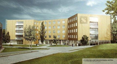 JA: Studentsamskipnaden har nå fått endelig ja til å bygge nye studenthybler på Bakkenteigen.