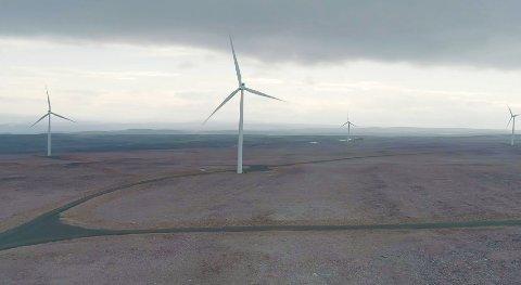 FRANSK MEDEIER: Salg av 49 prosent av datterselskapet Varanger KraftVind til franske CUBE, gjør at Varanger Kraft nå kan betale ut ekstraordinært utbytte til de sju eierkommunene. Her fra vindparken på Raggovidda ved Berlevåg.