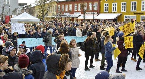 Demonstrasjon: Hva skjer egentlig i Hønefoss om dagen?