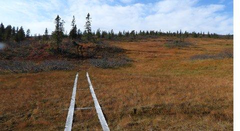 KLOPPER: Dette bildet av Statens Naturoppsyn viser klopper som er lagt ut i forhold til den påståtte ulovlige motorferdselen med ATV på Blefjell.