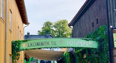 UNGMAT: Fredag 30.august er elver i Tønsberg, Re og Færder invitert til UNGMAT konferansen i Foynhagen.