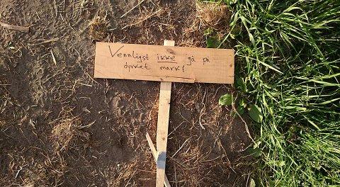 """""""Vennligst ikke gå på dyrket mark"""" står det på skiltet som ble knekt kort tid etter det ble satt opp ved jordet i Bodøsjøen."""