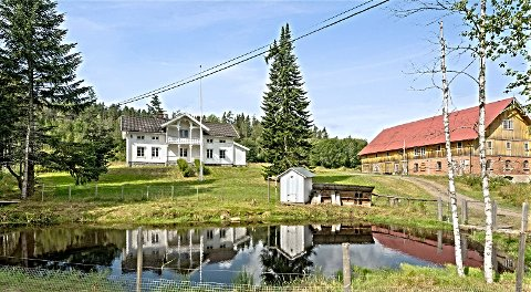 IDYLLISK: I Eidskog ligger småbruket Rud Vestre med  andedam og sveitserstilhus fra 1870. – Rett og slett idyllisk, sier megler Wenche Elisabeth Aanerud i Eiendomsmegler 1. Hun blir nå nedringt av interessenter.