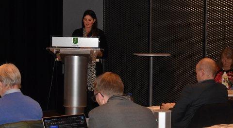 Vilde Håvardsrud i MDG var bare en av mange som skrøt av den reviderte Industriplanen til Kongsberg kommune.