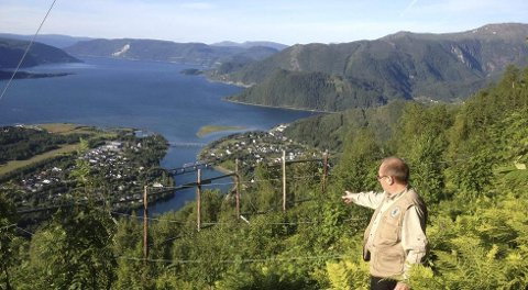 Reagerer: Fylkesleder Børge Torbergsen i Norges Miljøvernforbund reagerer på strengene som ifølge ham står og fanger fugl i Svartneslia. Foto: Privat